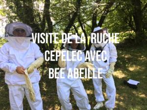 Article visite du rucher Bee Abeille avec la ruche Cepelec